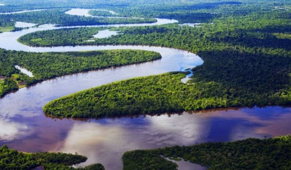 Amazonas Selva Ubicación Características Clima Y Vegetación